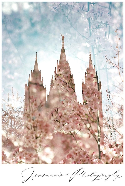 Temple Blooms Modern LDS Art  Jessicas Photography