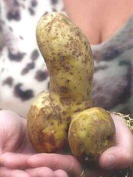 ziemniak ty chuju