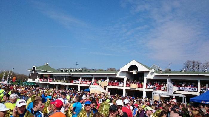 poznań półmaraton malta halfmarathon jestesmyfajni