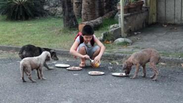 Ojciec znalazł syna karmiącego bezpańskie psy. Kilka miesięcy później… zbudowali coś fantastycznego.