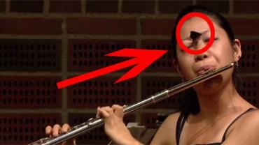 Ta flecistka w czasie występu w międzynarodowym konkursie musiała naprawdę zachować stoicki spokój! Dowiedz się, co ją spotkało!