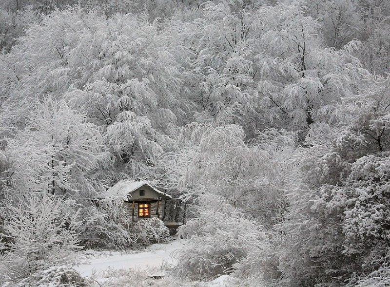 winter-houses-2__880