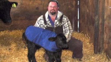 Ten rolnik zrobił coś pięknego dla tego zwierzęcia! Ciekawe, czy Ty postąpiłbyś w podobny sposób?