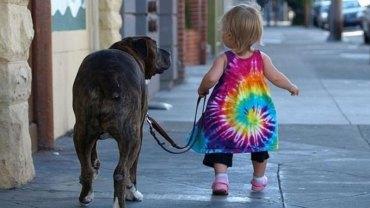 Przyjaźń dziecka ze zwierzęciem jest jedyna w swoim rodzaju. Te zdjęcia bezsprzecznie tego dowodzą