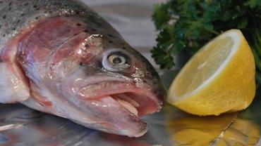 Lubicie ryby i owoce morza? Jak ognia unikajcie jedzenia tych, które są sprowadzane z Chin. To śmiertelne niebezpieczeństwo!