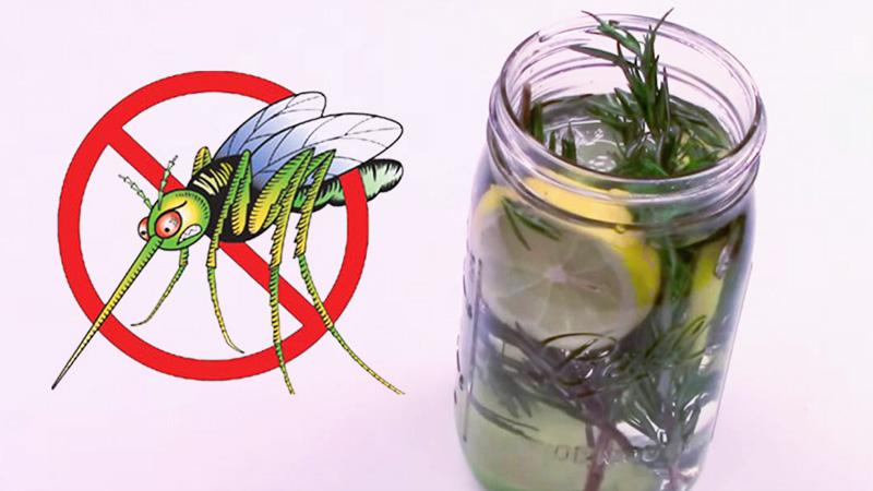 odstraszacz-na-komary