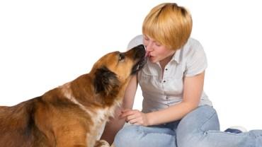 Całowanie psa może zagrażać twojemu zdrowiu! To nie żart!