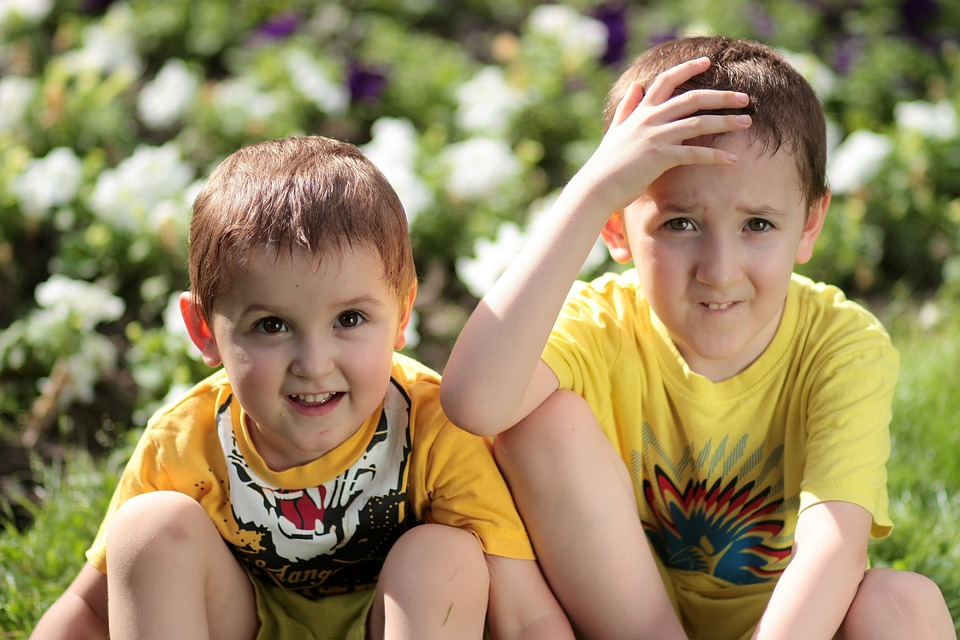 brothers-1507696_960_720