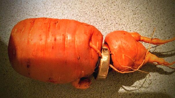 wedding-ring-carrot