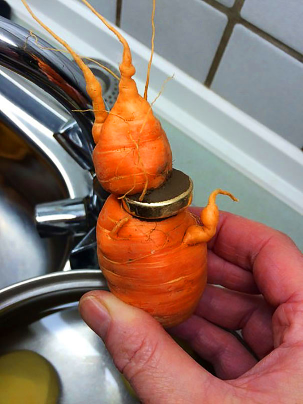 wedding-ring-carrot1