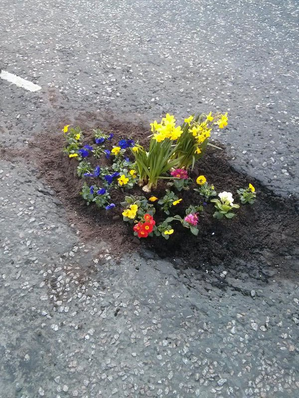 They plant flowers in the streets, because these cities don't want to fill the potholes. Guerilla gardening is getting popular all over the world 3