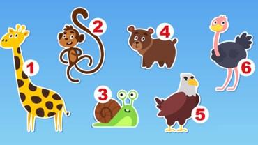 Które zwierzę lubisz najbardziej? Wybierz jedno i dowiedz się czegoś interesującego na swój temat!