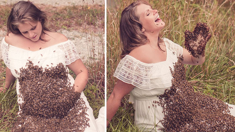 She wanted to have a unique pregnancy session, so she put the queen of bees on her stomach and waited for the entire street to collapse. Internet users are knocking themselves upside the head! 4