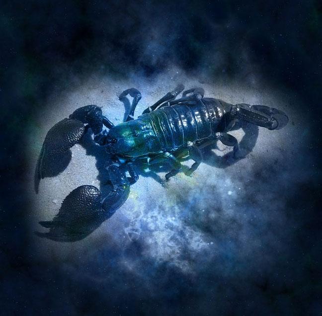 Skorpiony często robią złe wrażenie, ale bardzo zyskują przy bliższym poznaniu. Sprawdź, jakie zalety cechują osoby spod tego znaku zodiaku