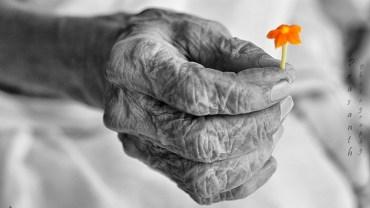 """""""50 krótkich życiowych wskazówek, które dał mi mój 95-letni dziadek!"""" Warto je zapamiętać i przekazywać innym"""