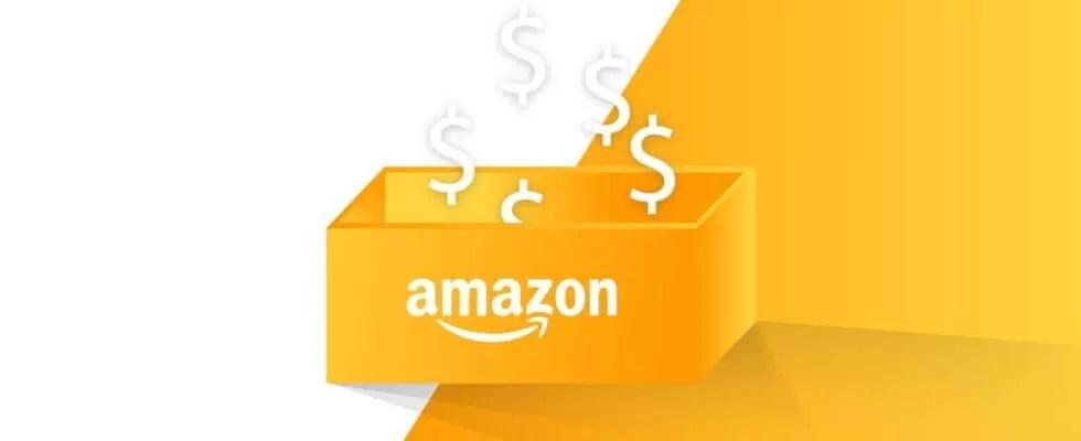Frais Amazon