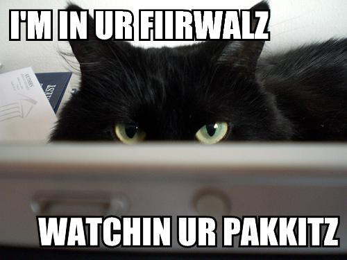 lolcat firewall cat - Configurer Iptables pour autoriser la remontée d'informations depuis RTM chez OVH