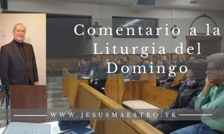 HOMILIA DOMINGO XXX T. ORDINARIO.