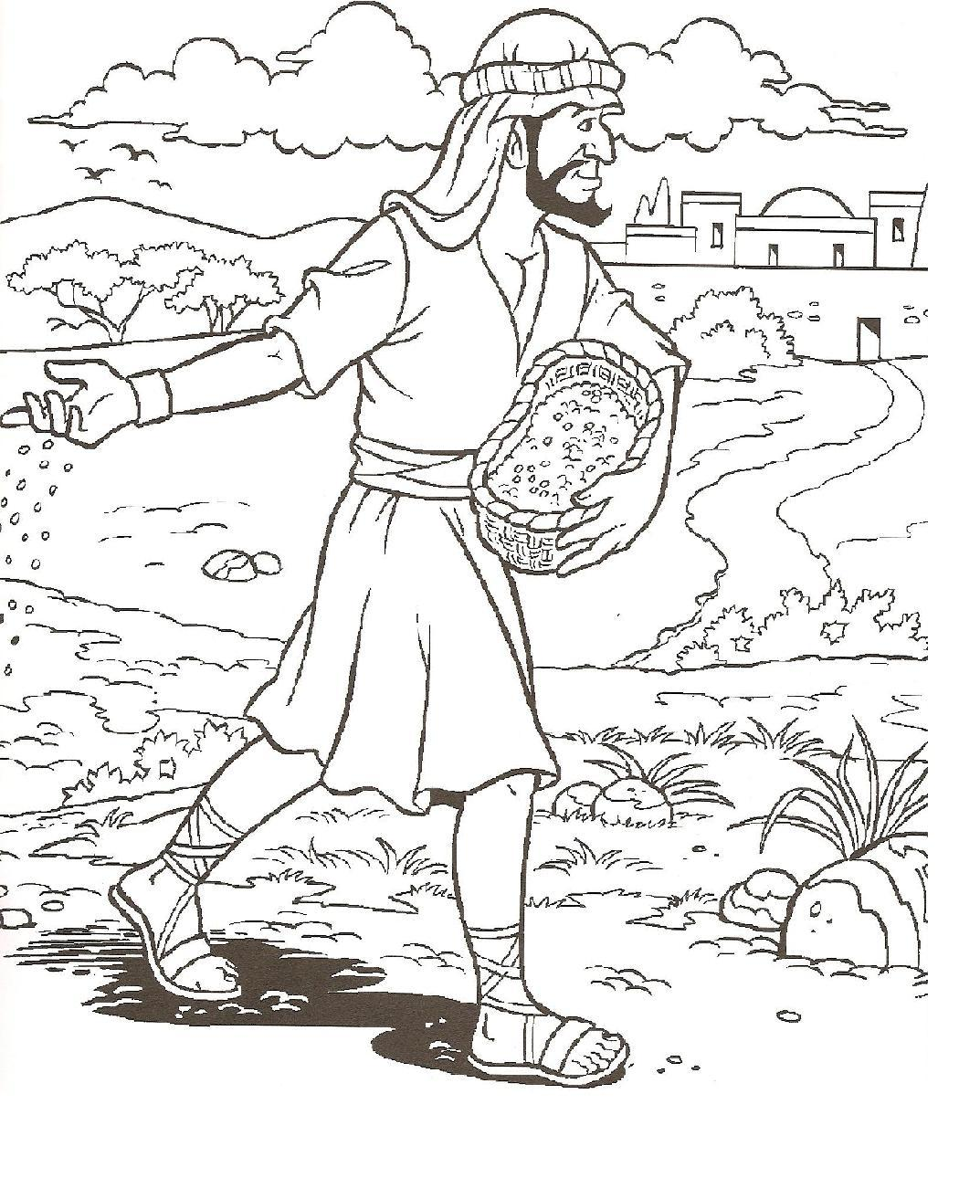 1000+ images about Parable of the Sower on Pinterest