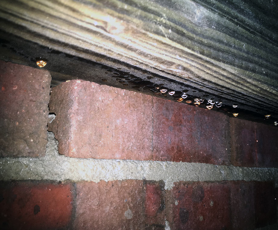 damp wood joists in crawl space