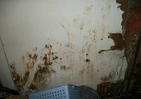 When drywall is damaged by flooding water, it can discolor and become a breeding ground for mold, rot, and mildew.