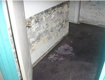 Wet damp basement walls