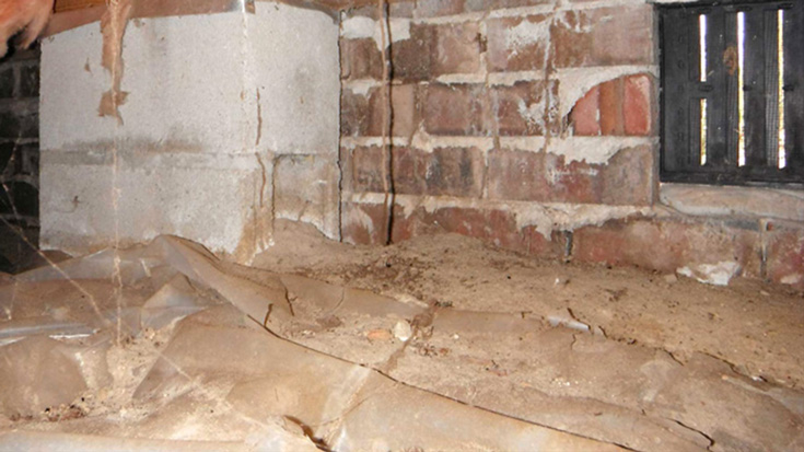 avoid rodents in your crawl space