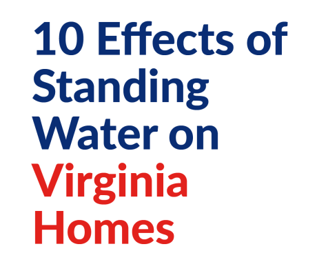 10 Effects of Standing Water on Virginia Homes