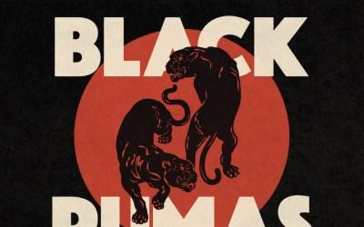 Black Pumas – Colors