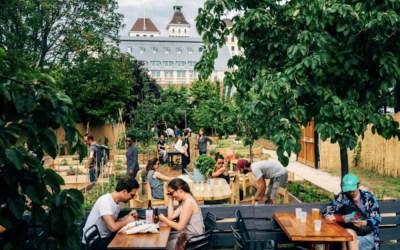 Jardin21, réouverture de la friche végétale le 21 mai 2021