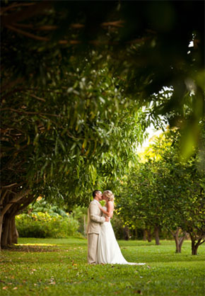beach lawn chairs tufted white chair olowalu plantation house, maui, hawaii - the destination wedding blog jet fete by bridal bar