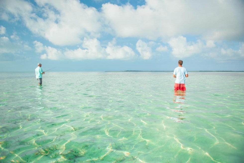 Bahamas fly fishing
