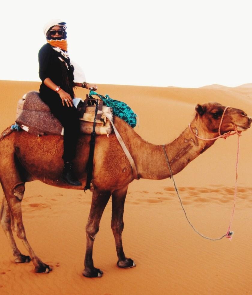 KO-Jetsetter Problems-ride a camel like a badass 5