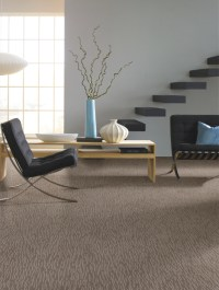 Jetson Green - A Durable Soft New Carpet Tigressa