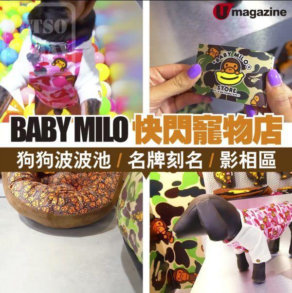 BABY MILO® Store BY A BATHING APE® 寵物系列概念館 - Jetso Today