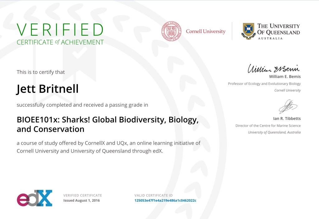 shark-certificate-thenomadictribes-com
