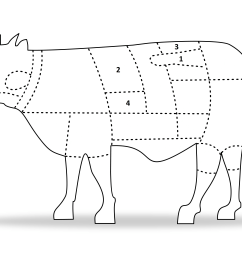 the following diagram should give you a better idea of where each cut we offer on jett foods is located on the beef carcass  [ 5417 x 3033 Pixel ]