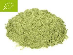Welche Arten von Weizengras Pulver gibt es im Test & Vergleich?