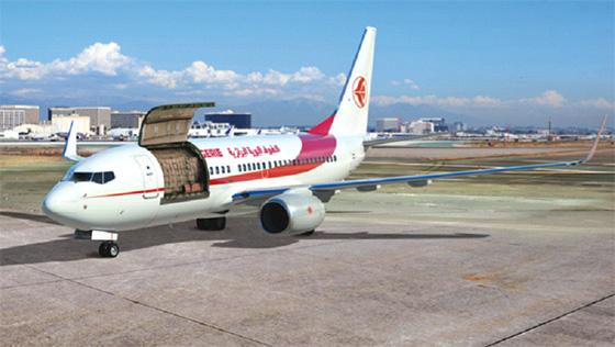 Air Algérie réceptionne un Boeing 737-700 C
