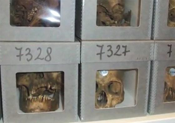 Les 37 crânes de résistants algériens séquestrés à Paris