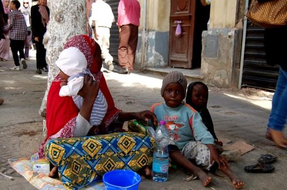 La main tendue du Croissant-Rouge algérien au réfugiés syriens et maliens