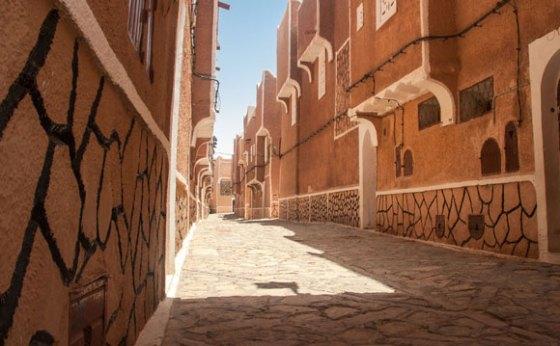 Près de 3.600 logements publics locatifs réalisés à Adrar