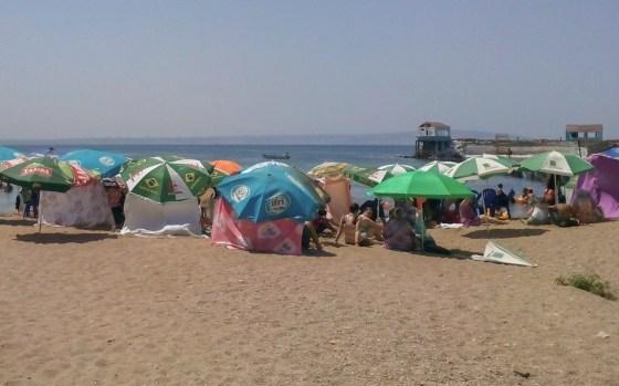 La chasse aux loueurs de parasols s'amplifie à Alger