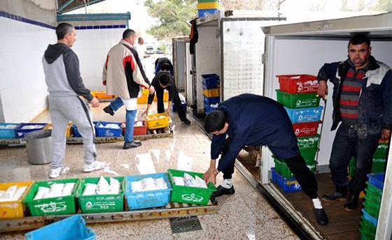 Médéa : Le lait en sachet disponible