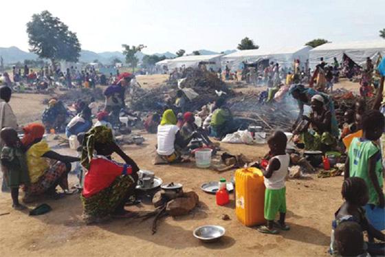 Le Niger veut rapatrier ses ressortissants en errance dans les villes algériennes