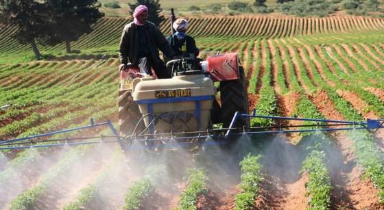 L'agriculture n'attire pas les jeunes ruraux