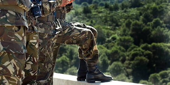 Le FLN salue les efforts «colossaux» de l'Armée Nationale Populaire