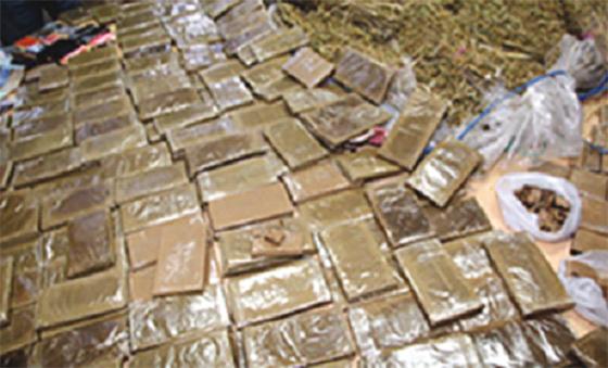Arrestation de deux narcotrafiquants et saisie de 260 kg de kif
