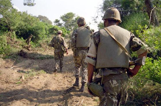 Deux terroristes arrêtés par un détachement de l'ANP