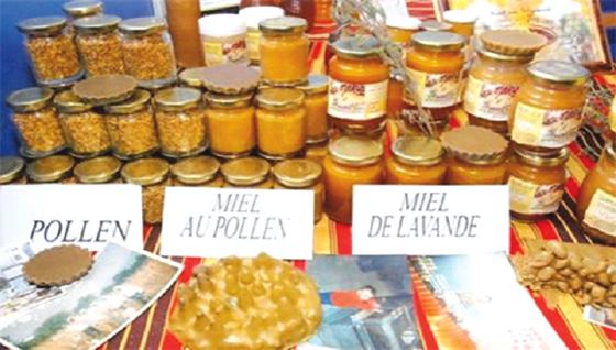 Lancement de la 3e édition de la foire du miel de Kabylie